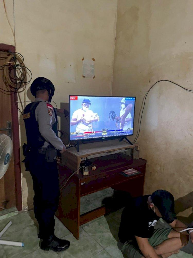 Judi Sabung Ayam Melalui Siaran TV Digerebek, 20 Pelaku Ditangkap